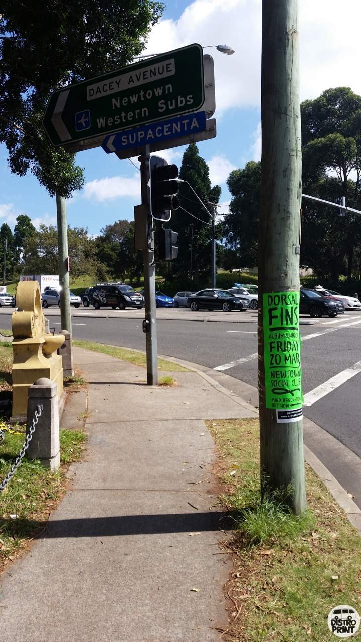 Distro Print Pole Posters1.jpeg