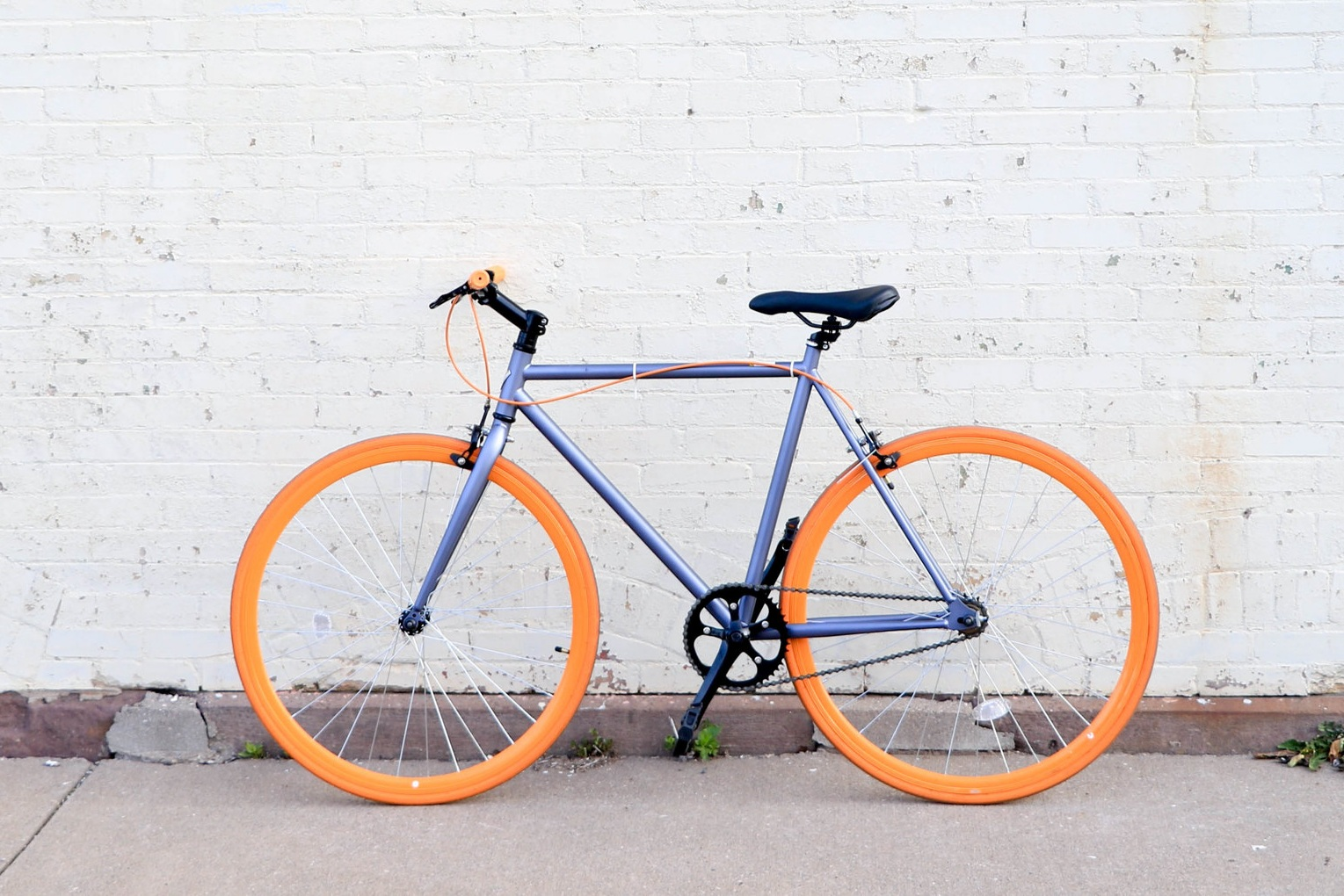 Running a painting company from a bicycle may not seem like the best business plan, but somehow it worked out!