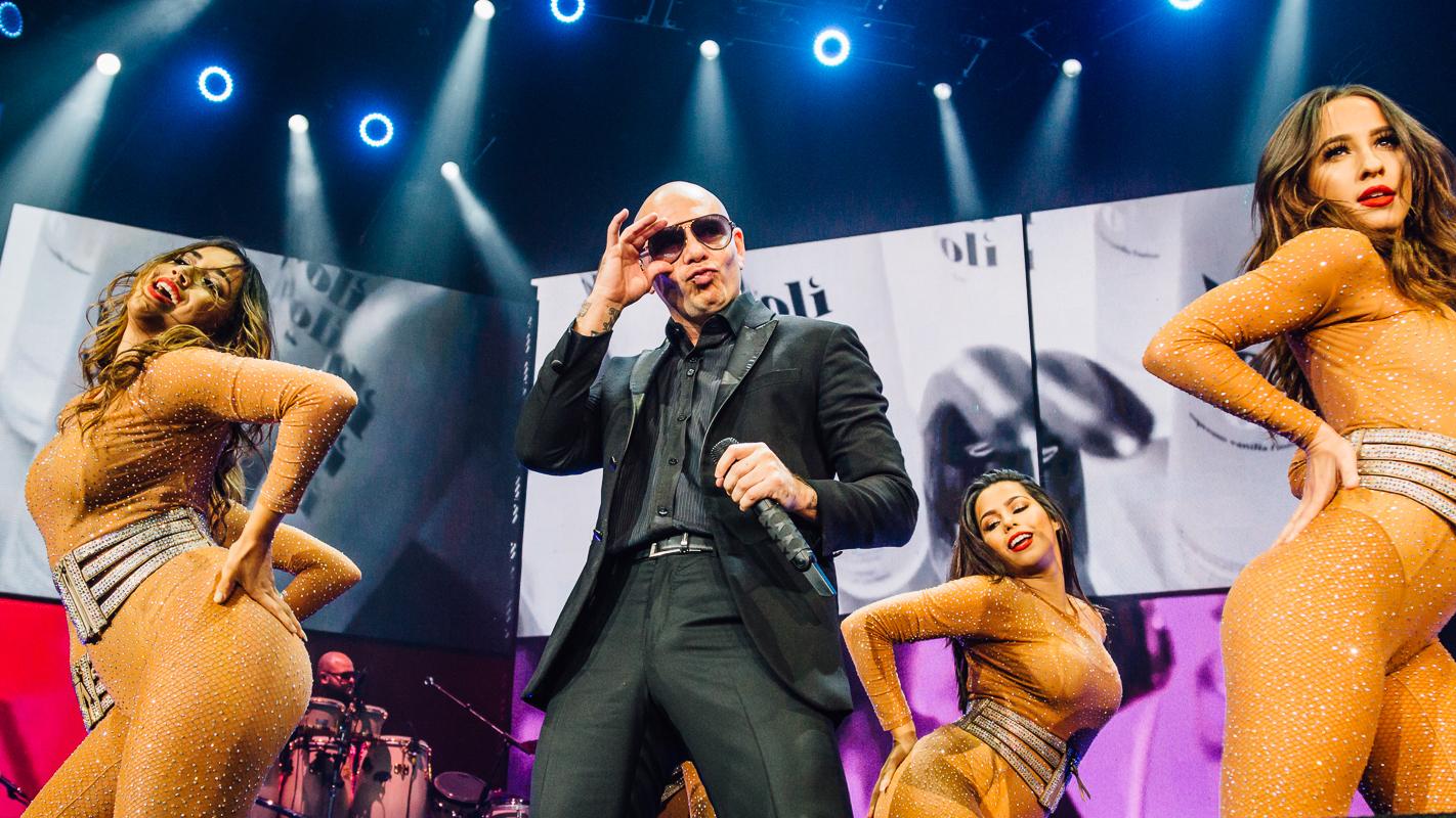 Pitbull//Denver, Colorado