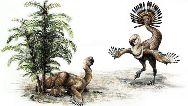 Oviraptor   Image Credit:Sydney Mohr/Canadian Press