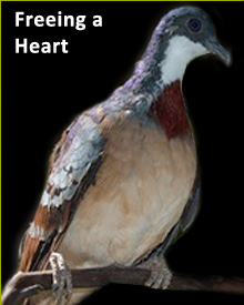 Save Heart.jpg