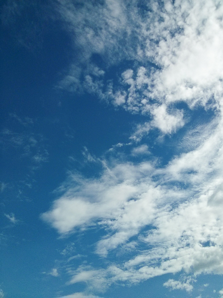 The sky that day was bright and blue, a rarity in Shanghai. 天空晴朗,云朵清晰可见,这样的天气对上海来说也是少有。