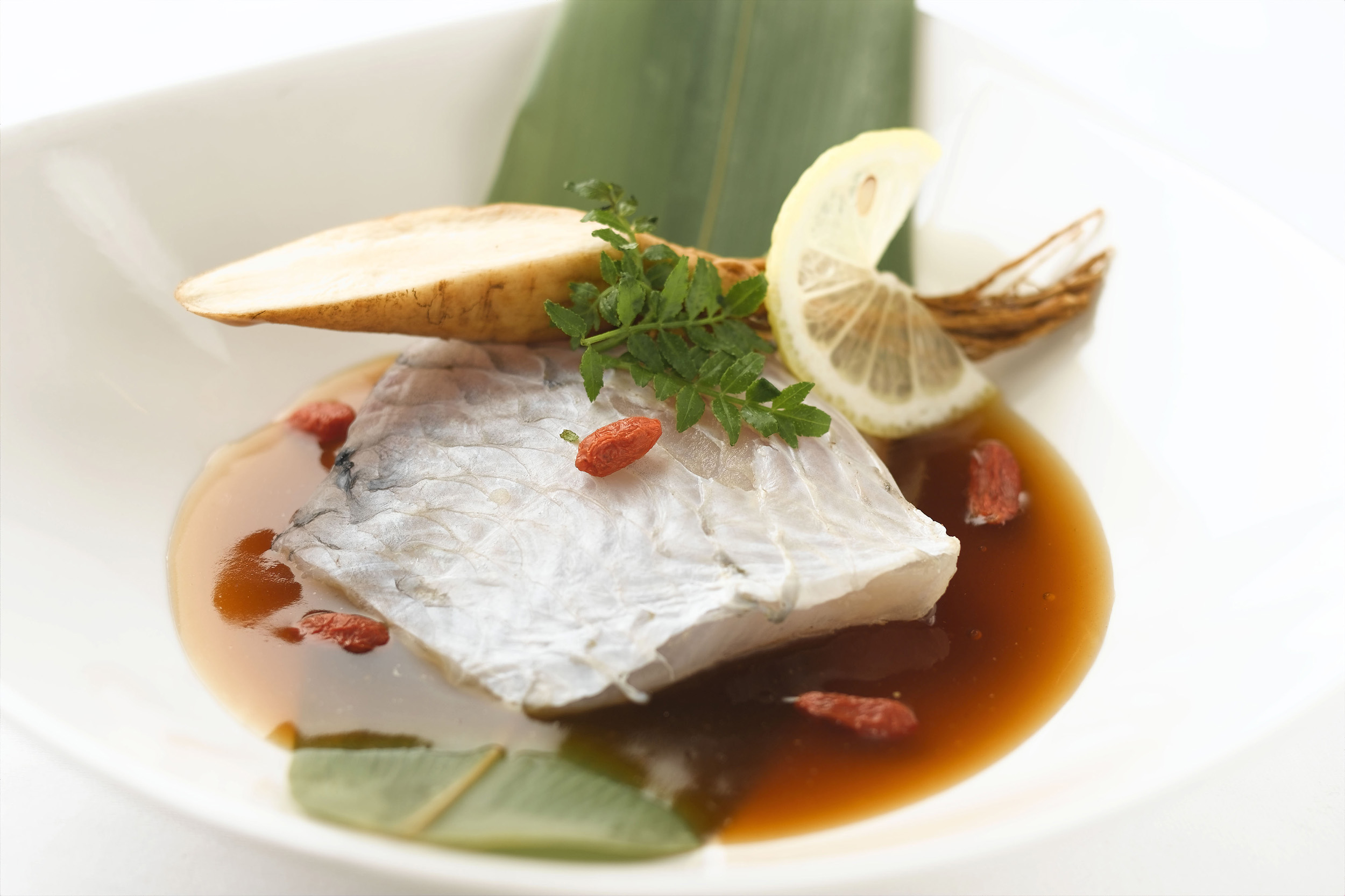 Green Wrasse with Ginseng.jpg