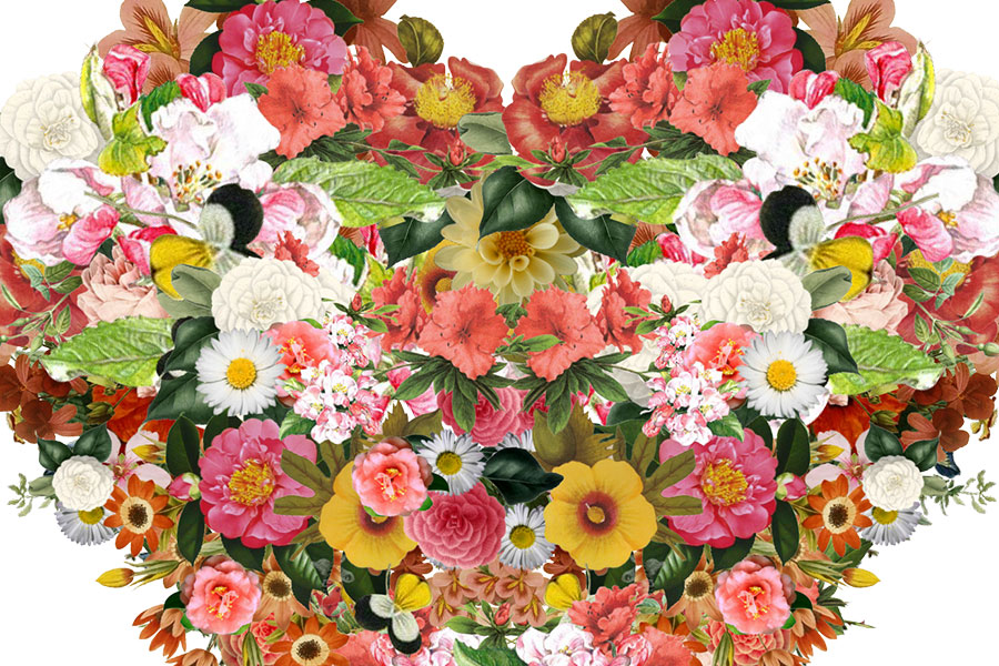 Collage_6a.jpg