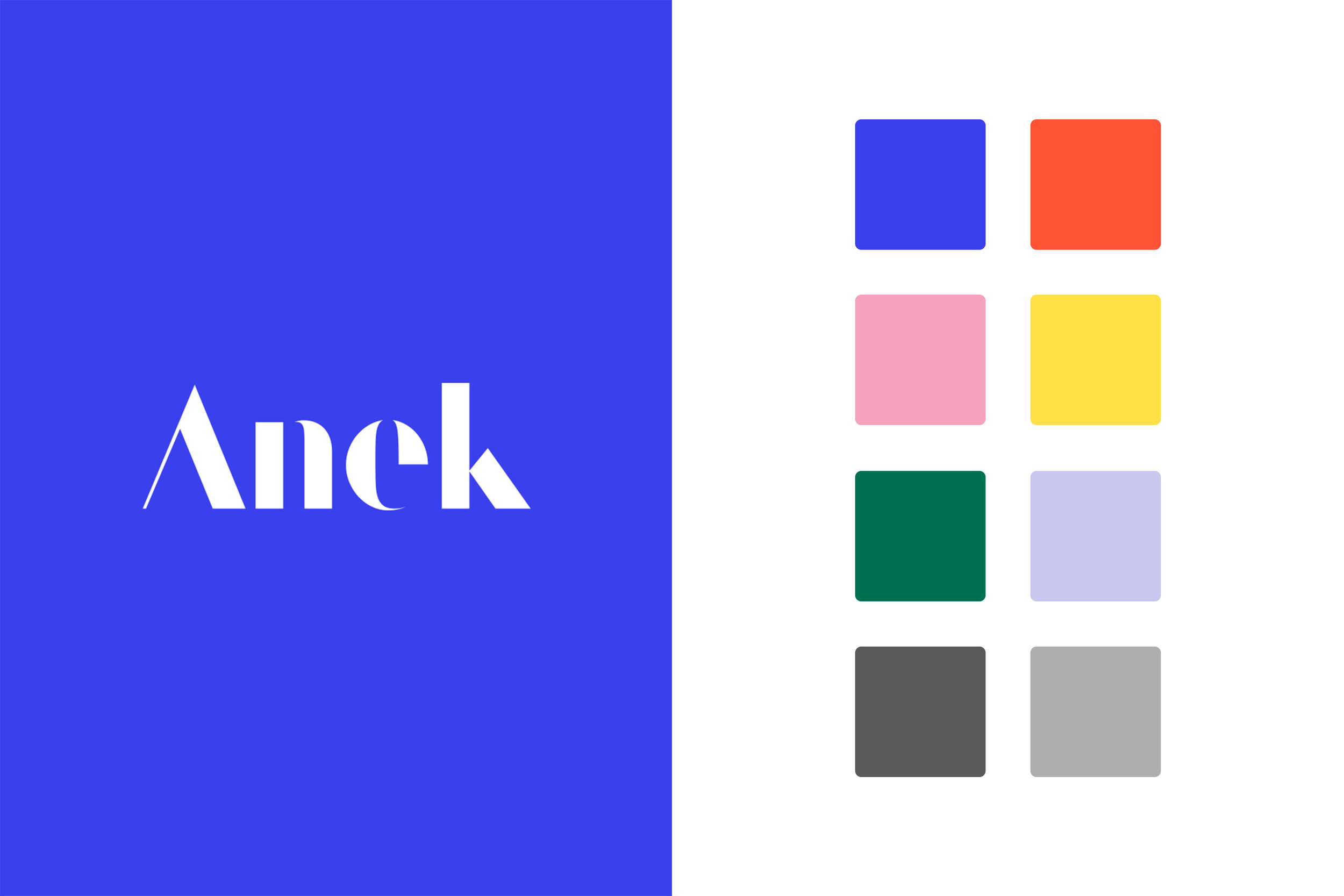 Anek_Web_03.jpg
