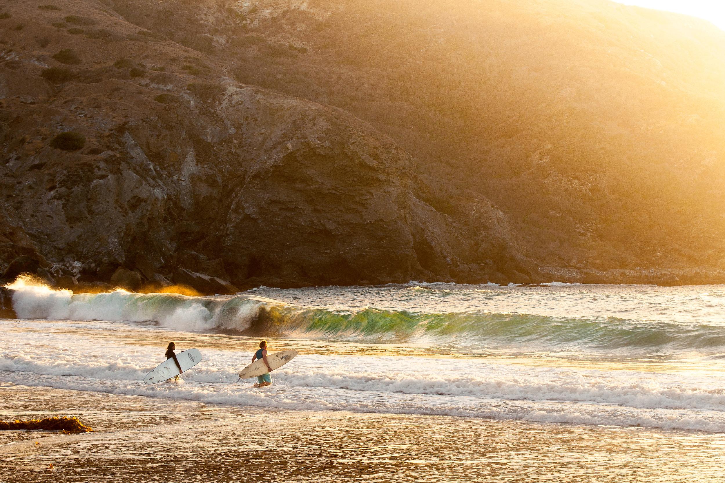 Shark-Harbor-surfing.jpg