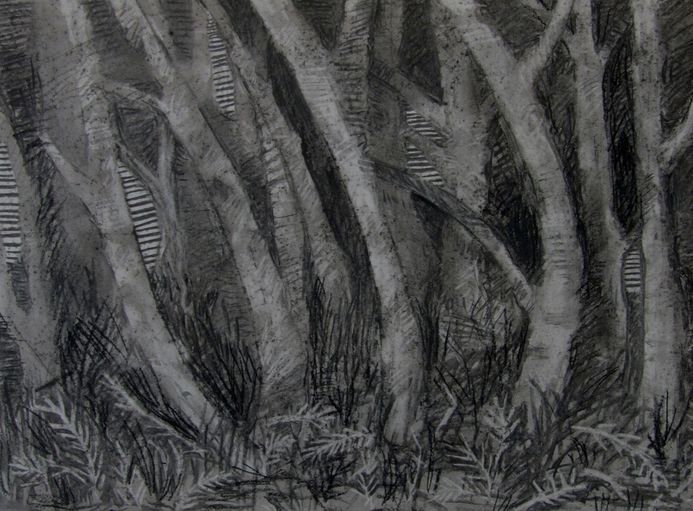 Charcoal on paper  2016, Iceland