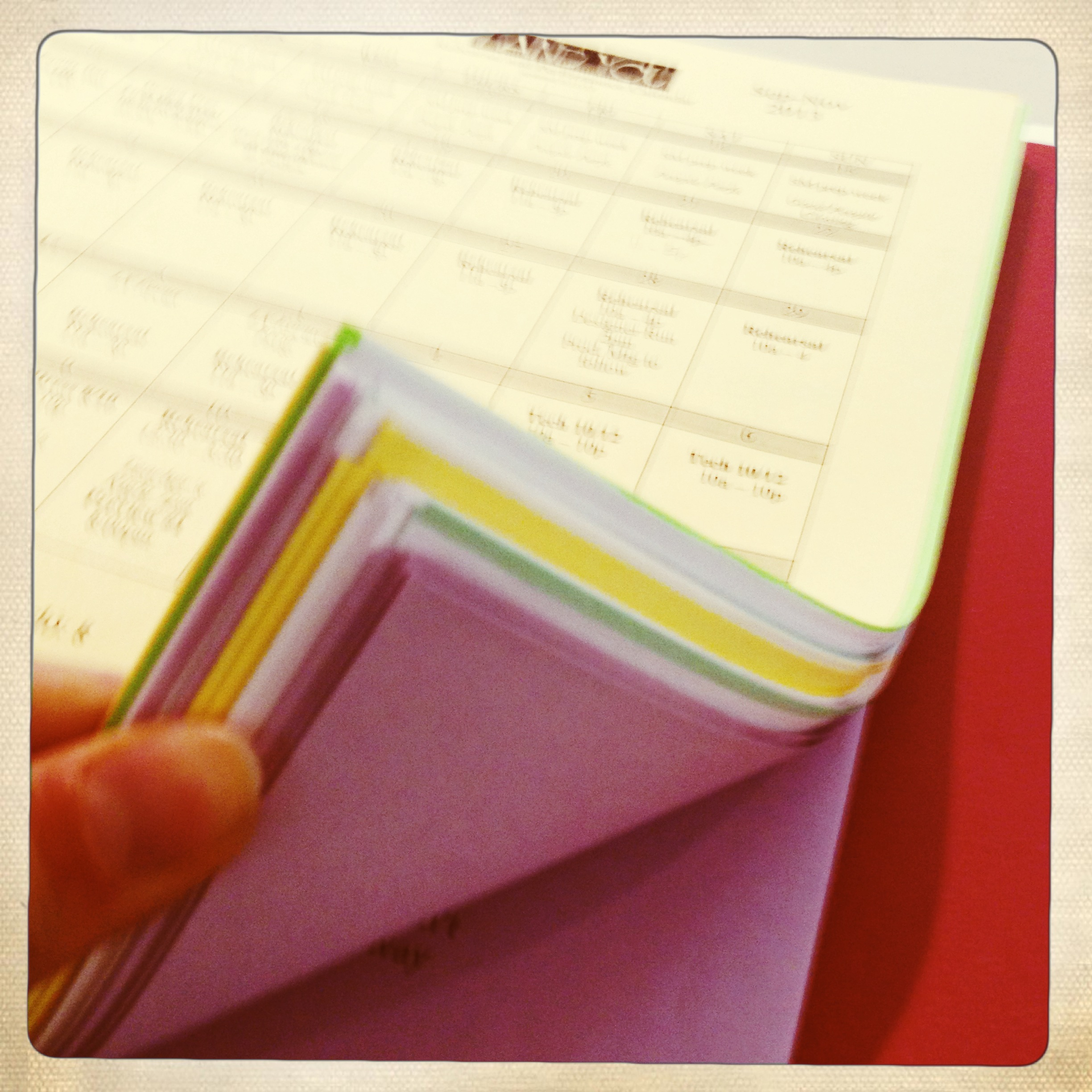 Purple and yellow and green pages!