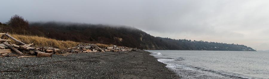 Discovery Park shore