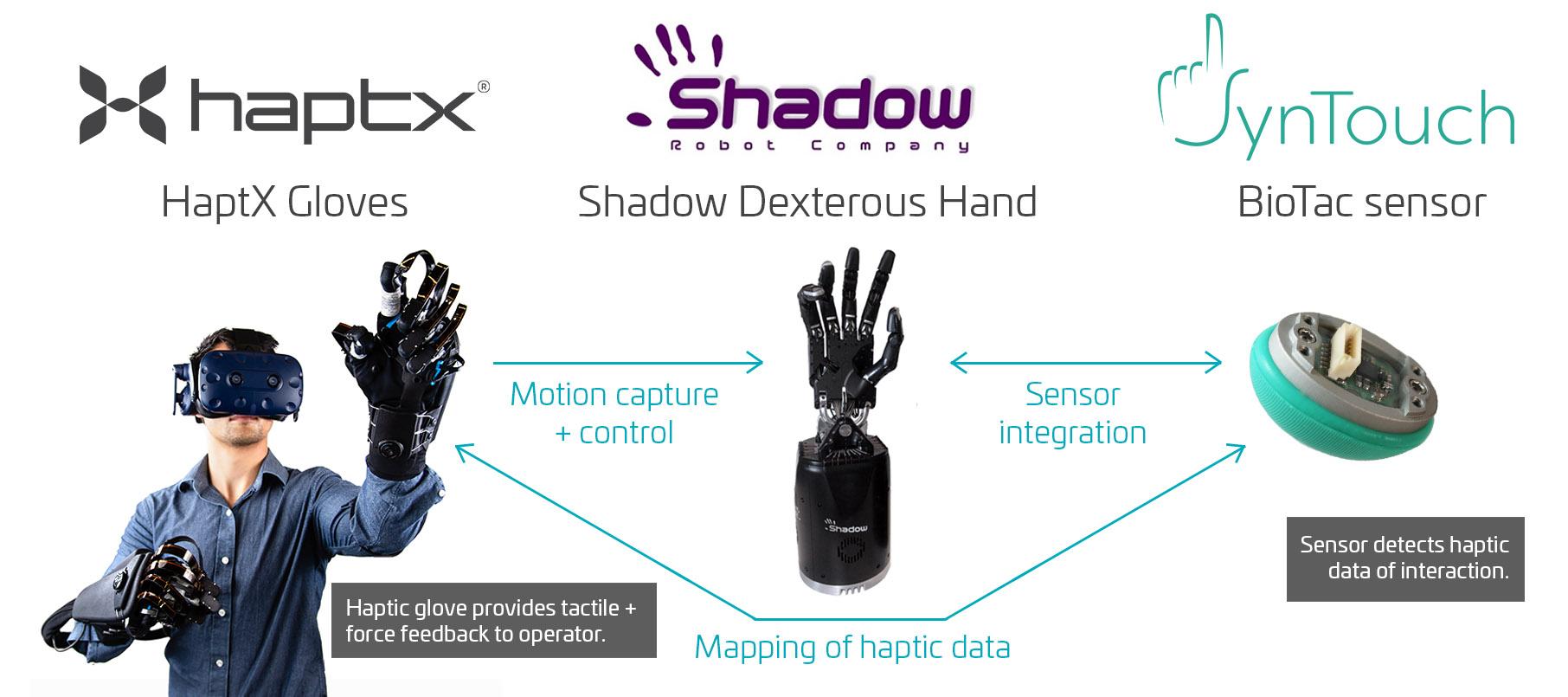 Haptic-telerobot-System-Components.jpg