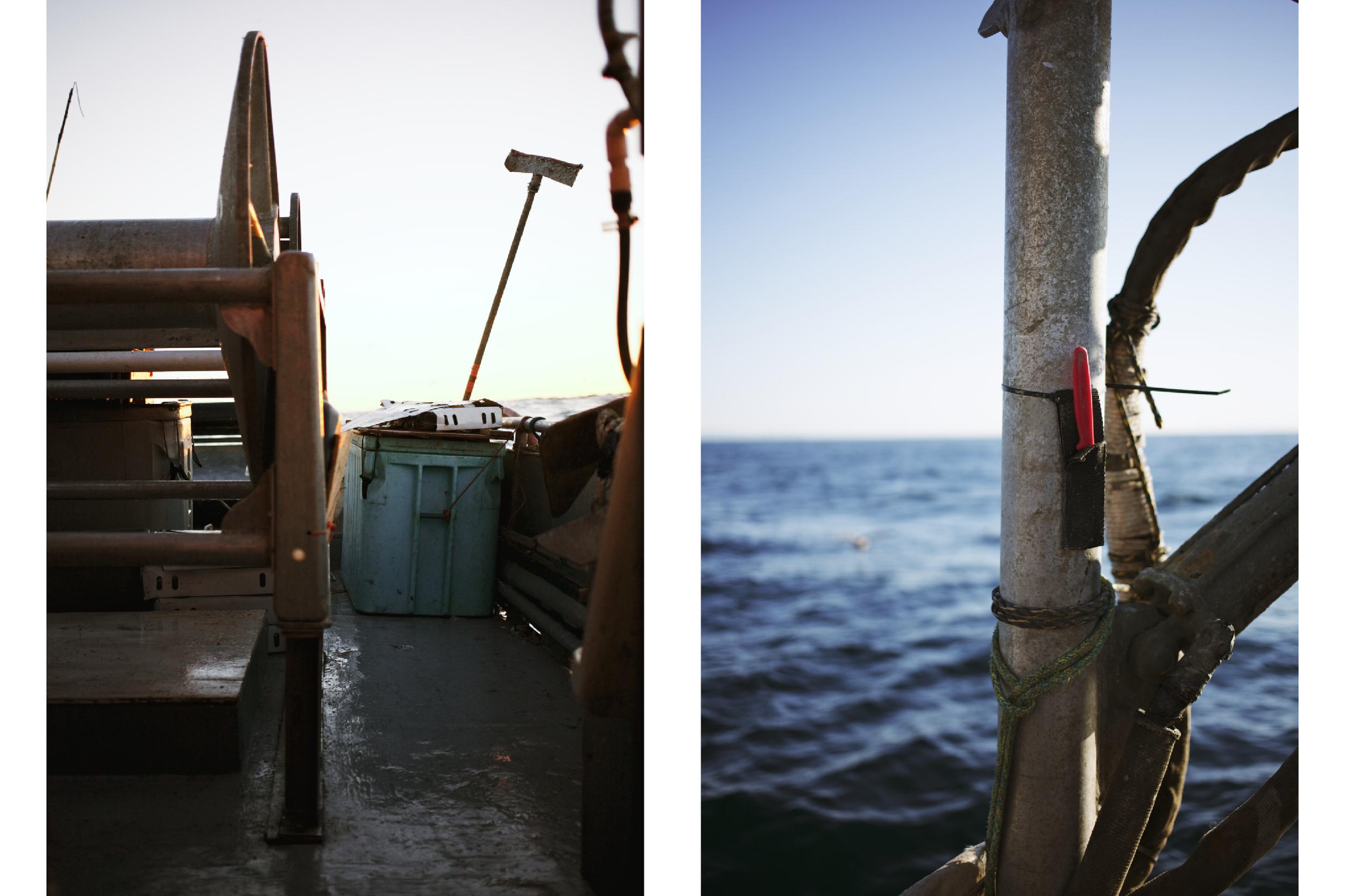 Crabbing6.jpg