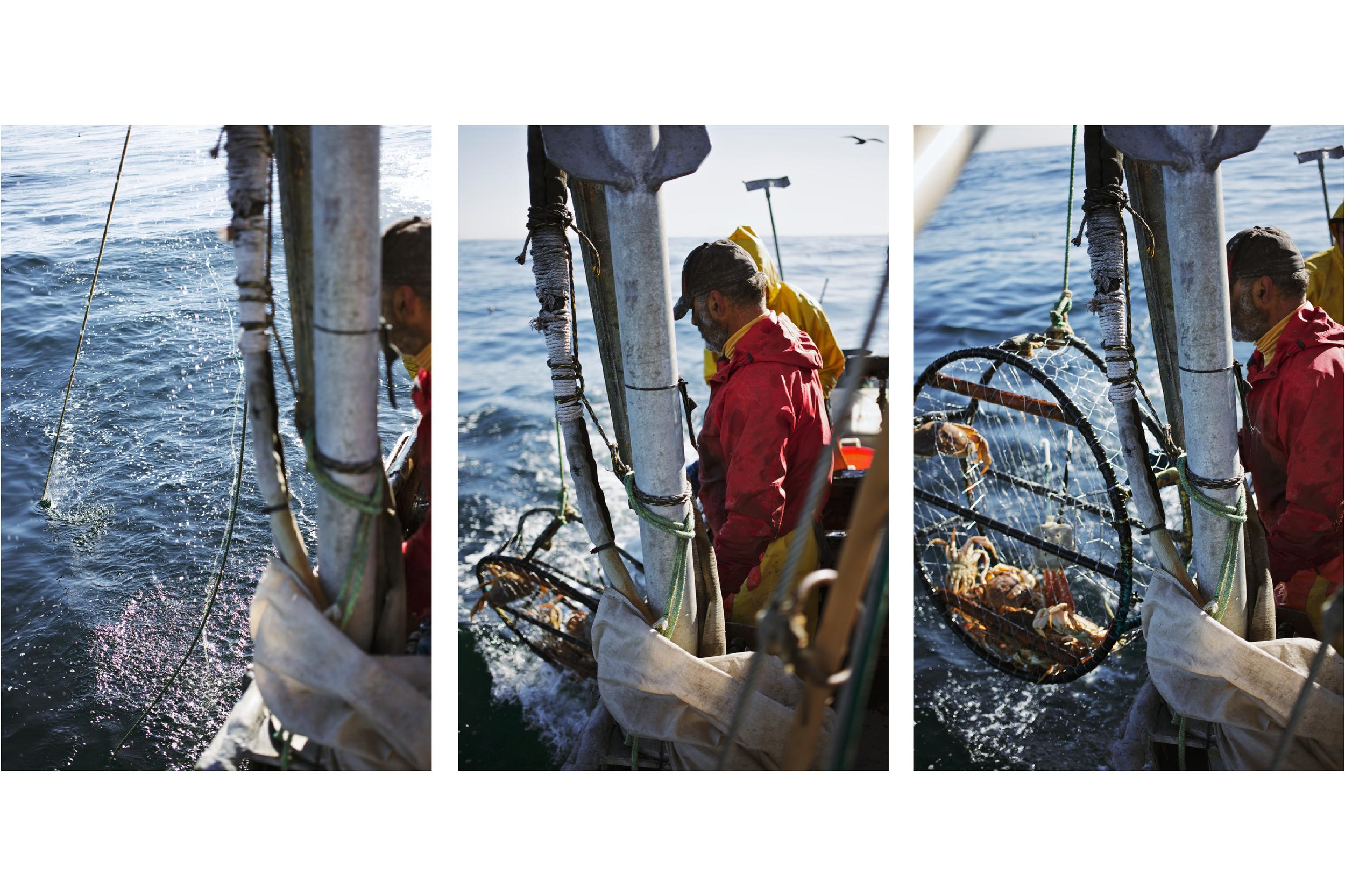 Crabbing9.jpg