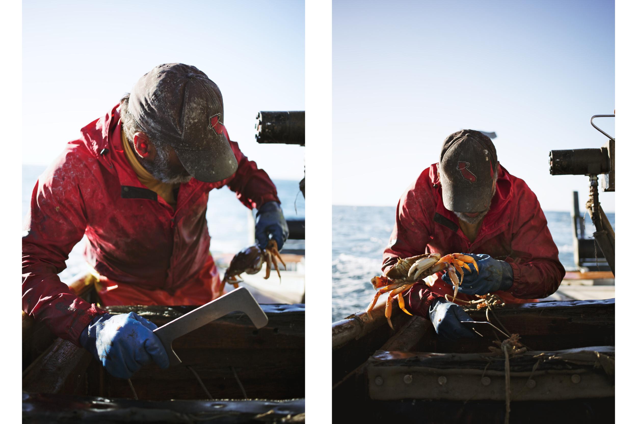 Crabbing14.jpg