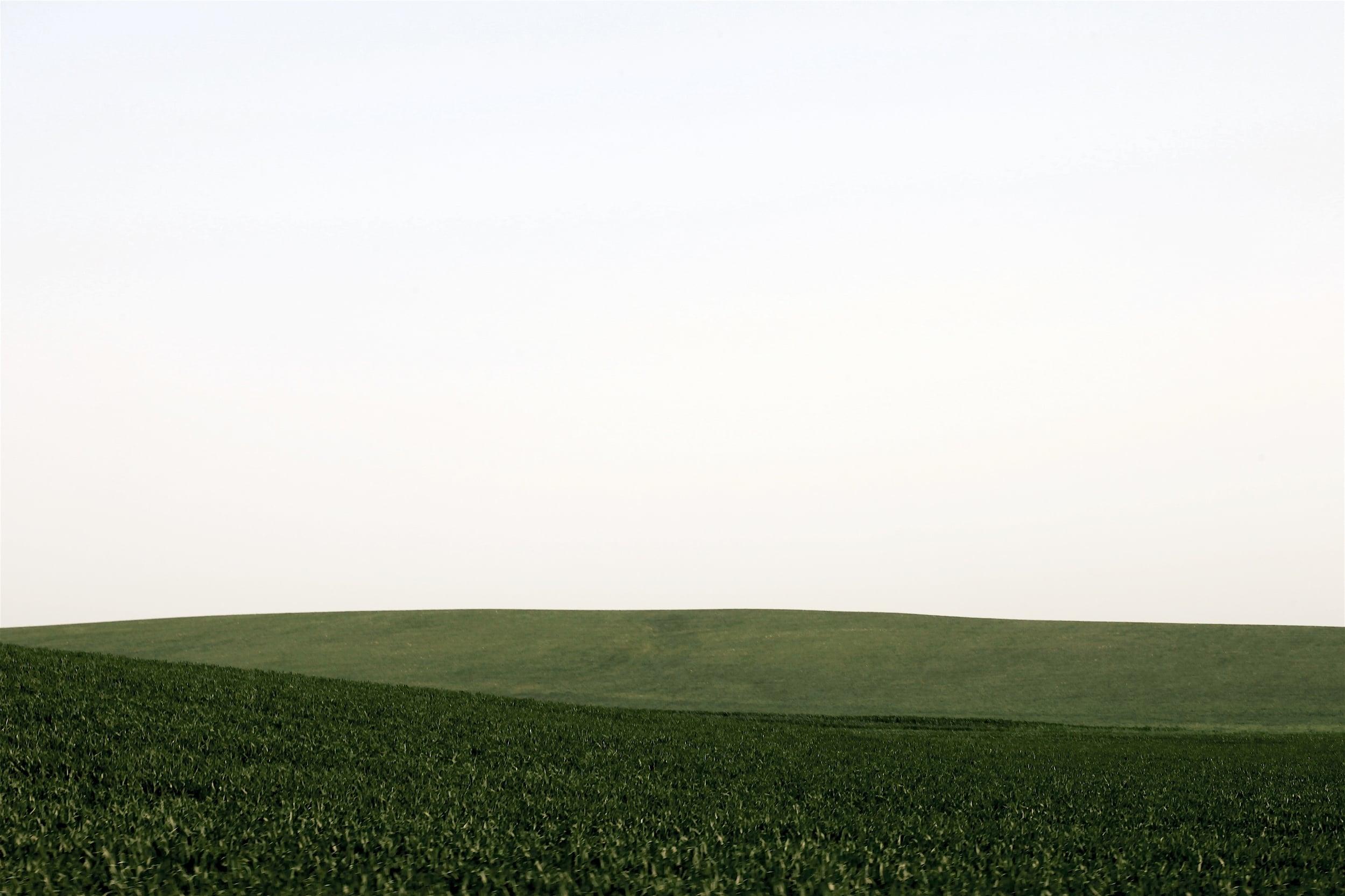 Land-7.jpg