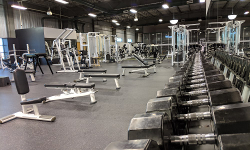MASSIVE WEIGHT ROOM - LIFE FITNESS, HAMMER STRENGTH, CYBEX BODYBUILDING, POWERLIFTING, OLYMPIC WEIGHTLIFTING, FUNCTIONAL FITNESS