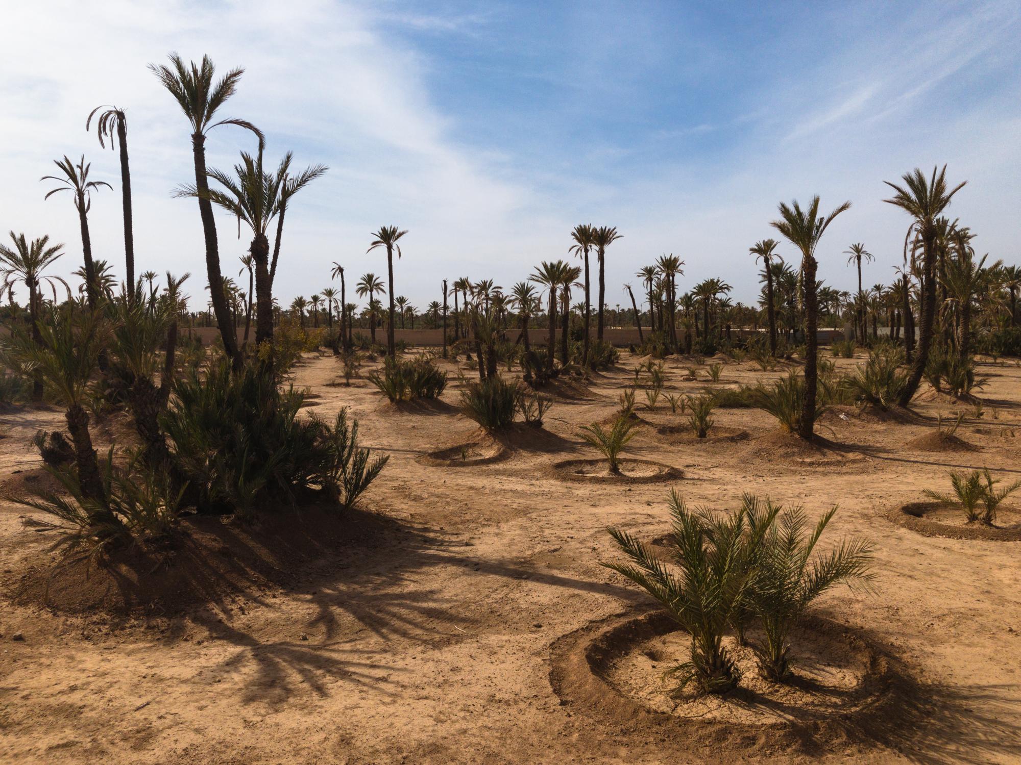 Marrakech_iPhone8+_Photos - Blog_Photos-44.jpg