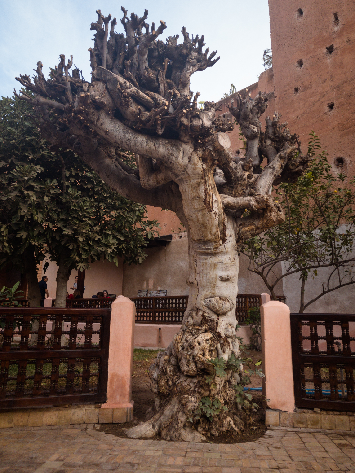 Marrakech_iPhone8+_Photos - Blog_Photos-58.jpg