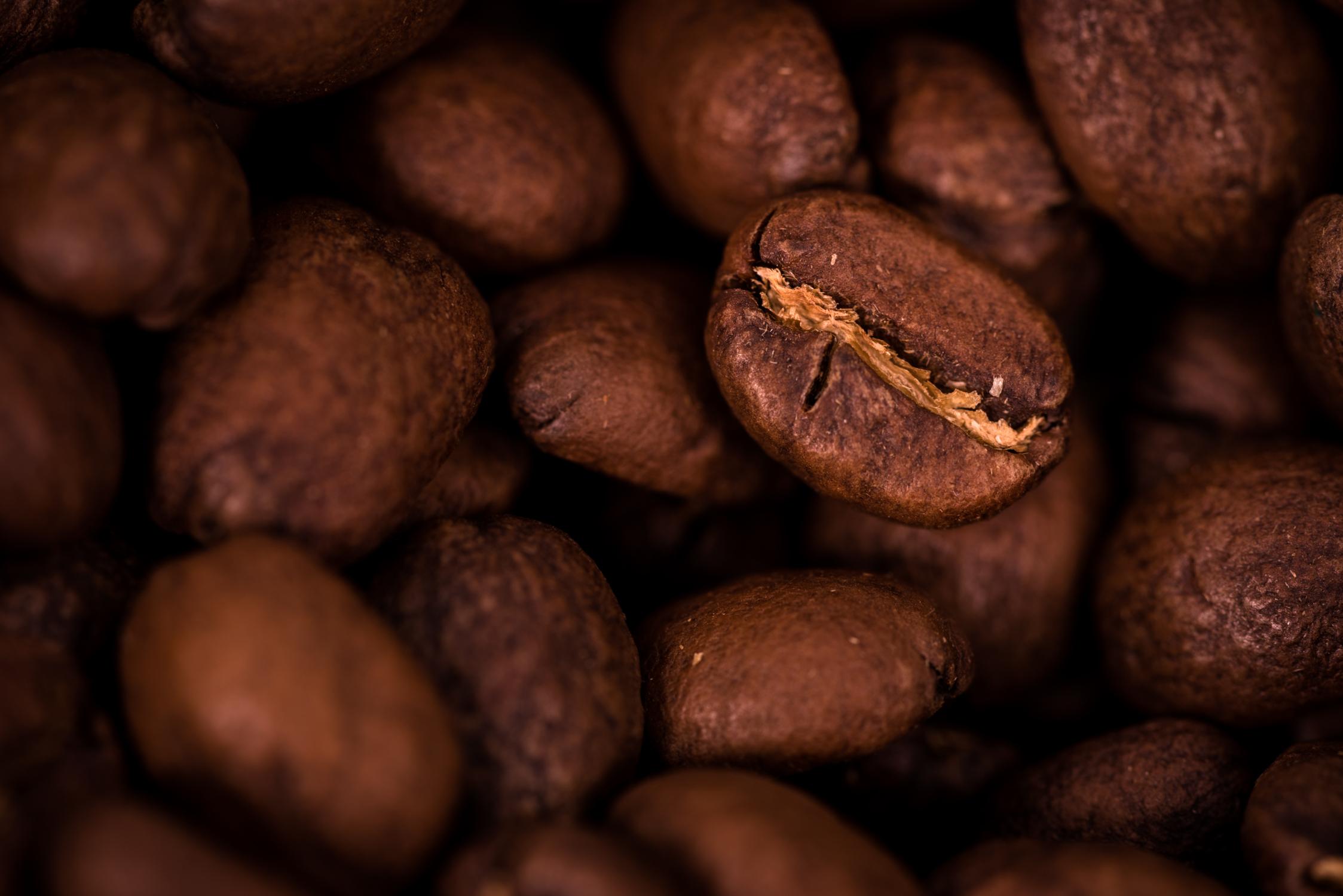Coffee Beans v1-2.jpg