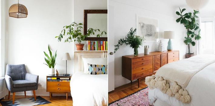 bedroom-plants.png