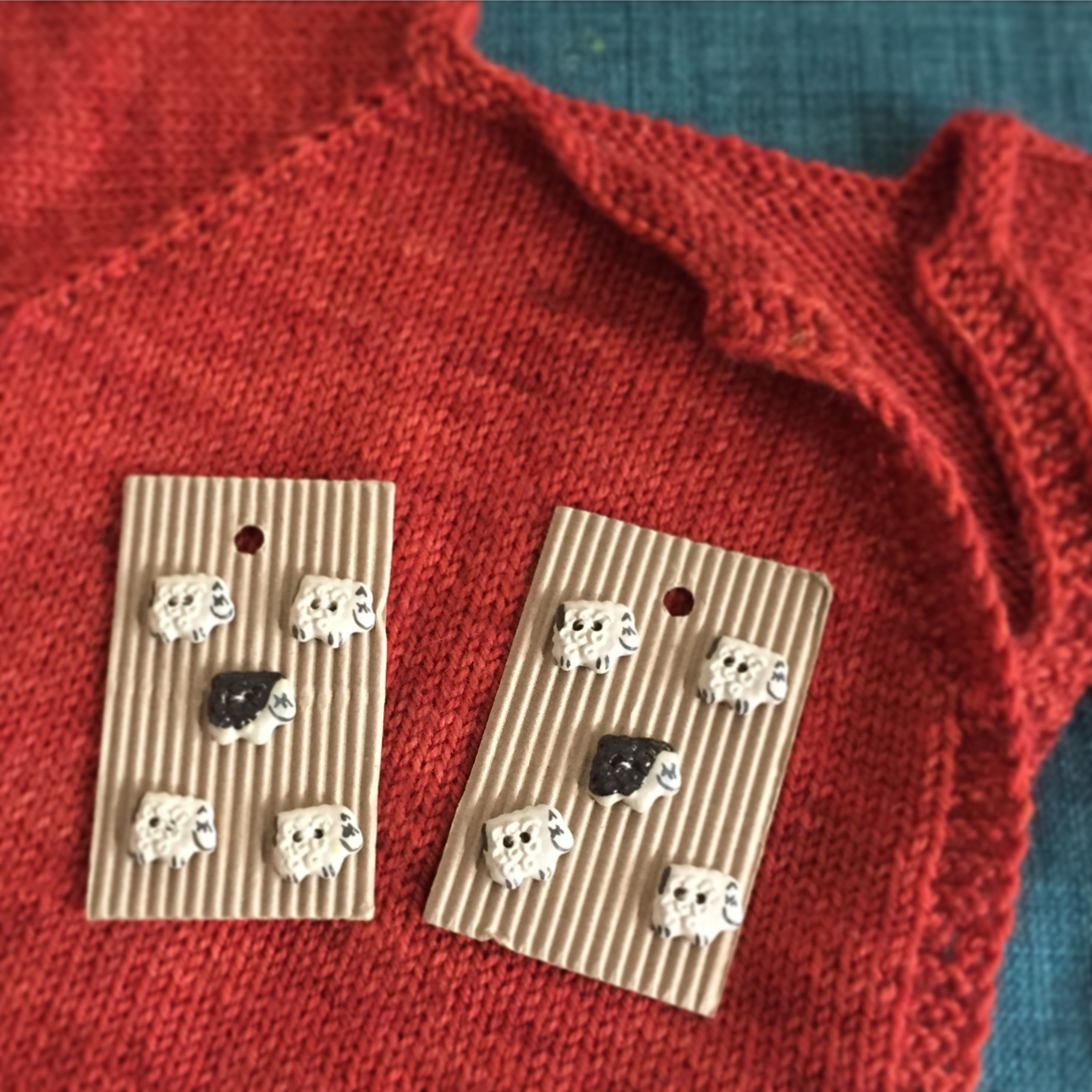 Sheep buttons for a baby sweater