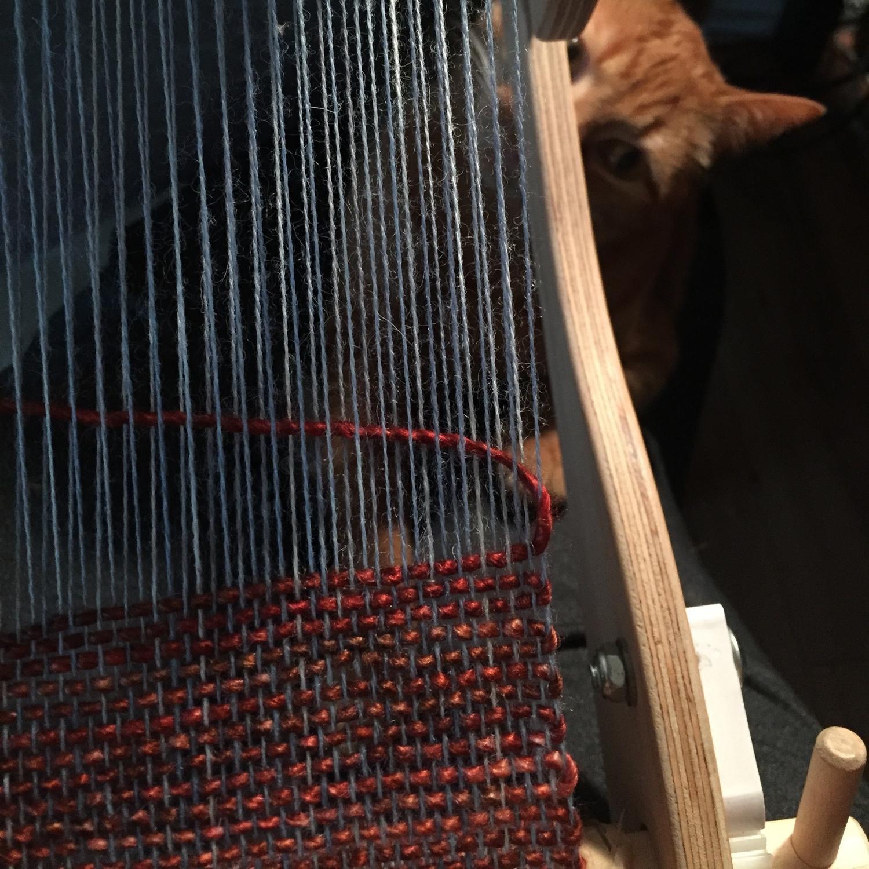 Jack loves to weave