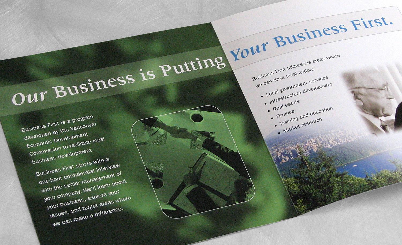 VED Brochure Left.jpg