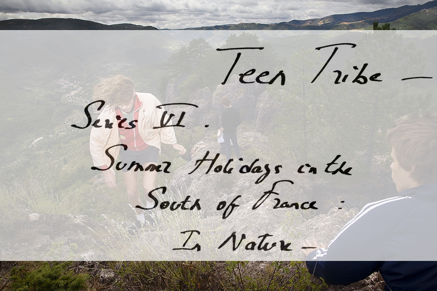 Teen Tribe Book by Steidl