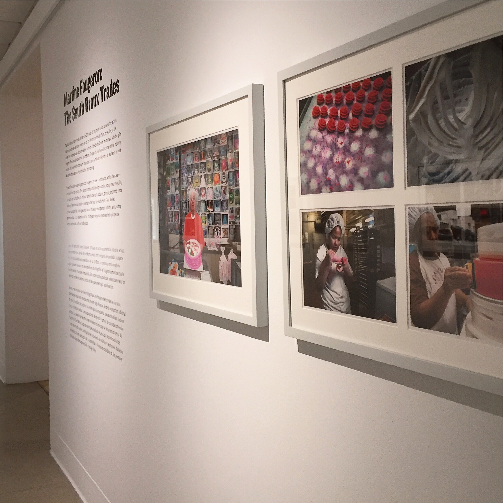 Solo Show: Bronx Museum of the Arts