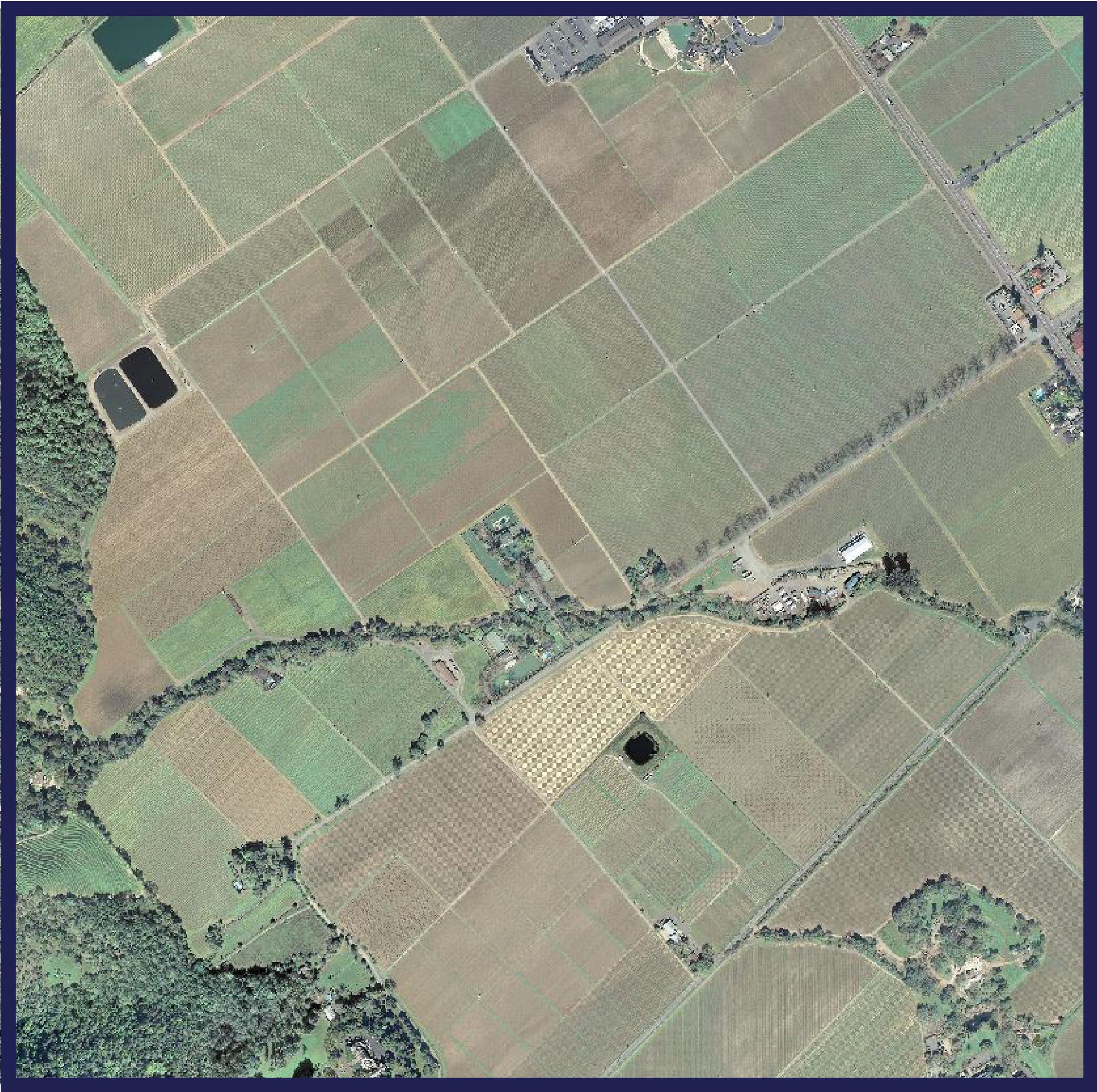 • Image analysis (eg. NDVI)    • Digital elevation models    • Vegetation mapping    • LiDAR mapping & analysis    • Object Based Image Analysis