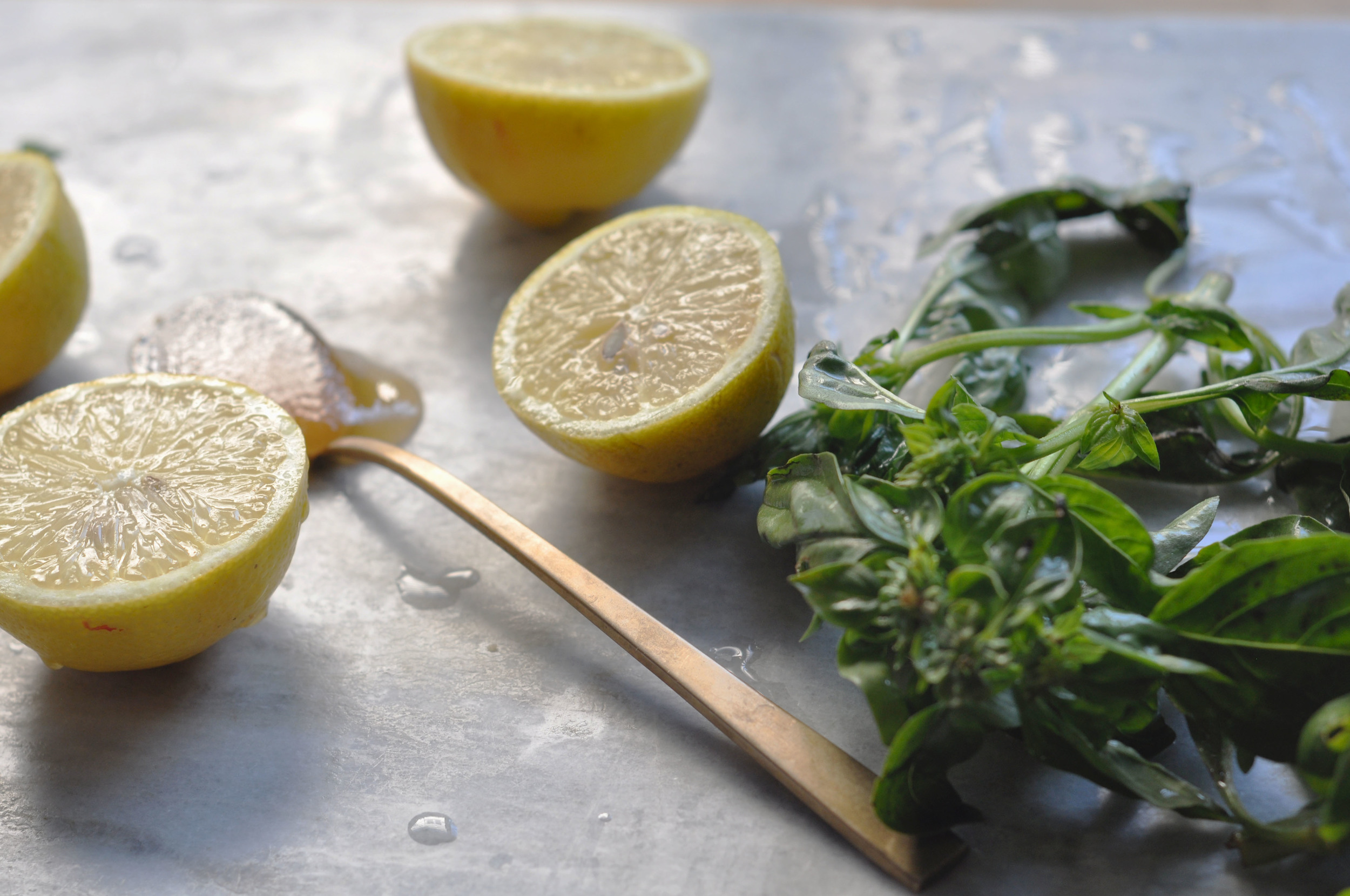freeandnativejournal basil honey lemonade 1