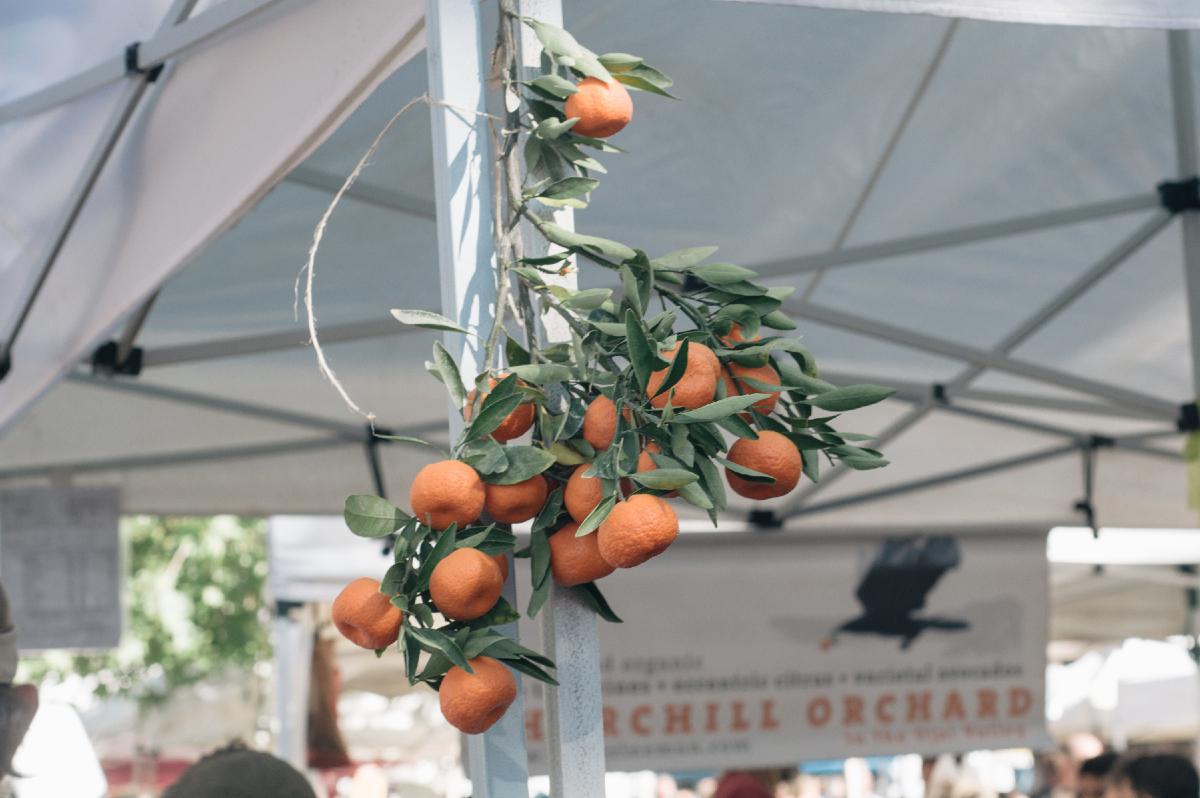 Freeandnative_ojai_farmers_market_7.jpg