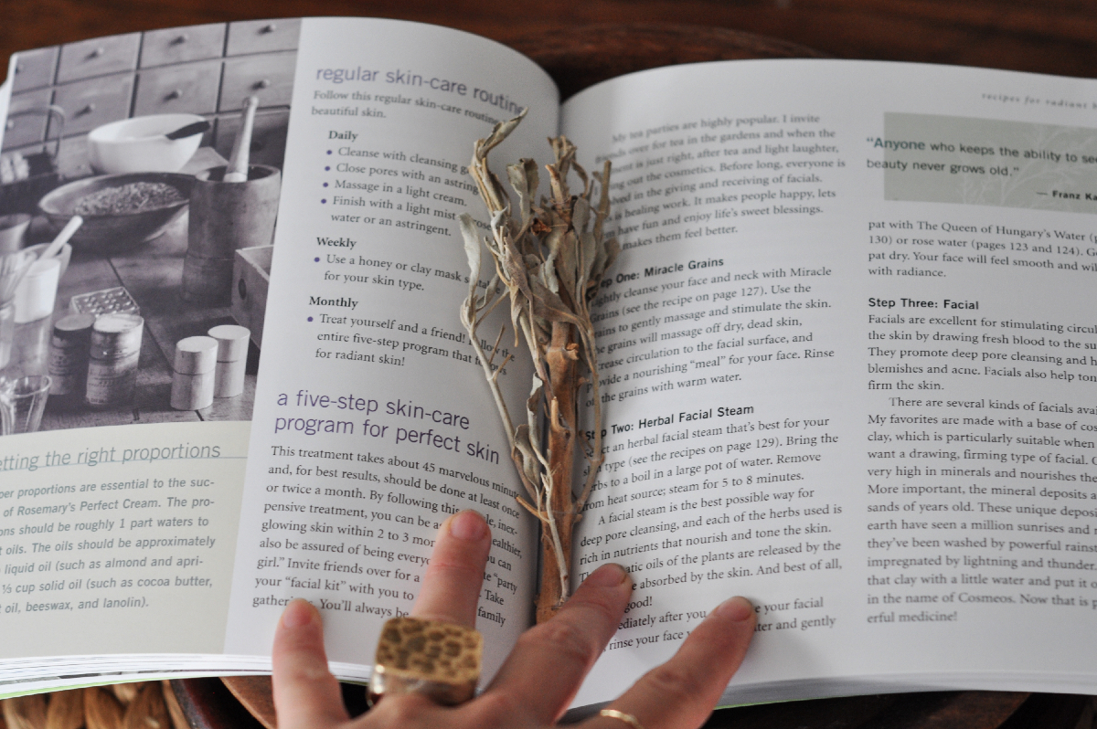 Freeandnative_Herbal_Recipes_Book_2.jpg