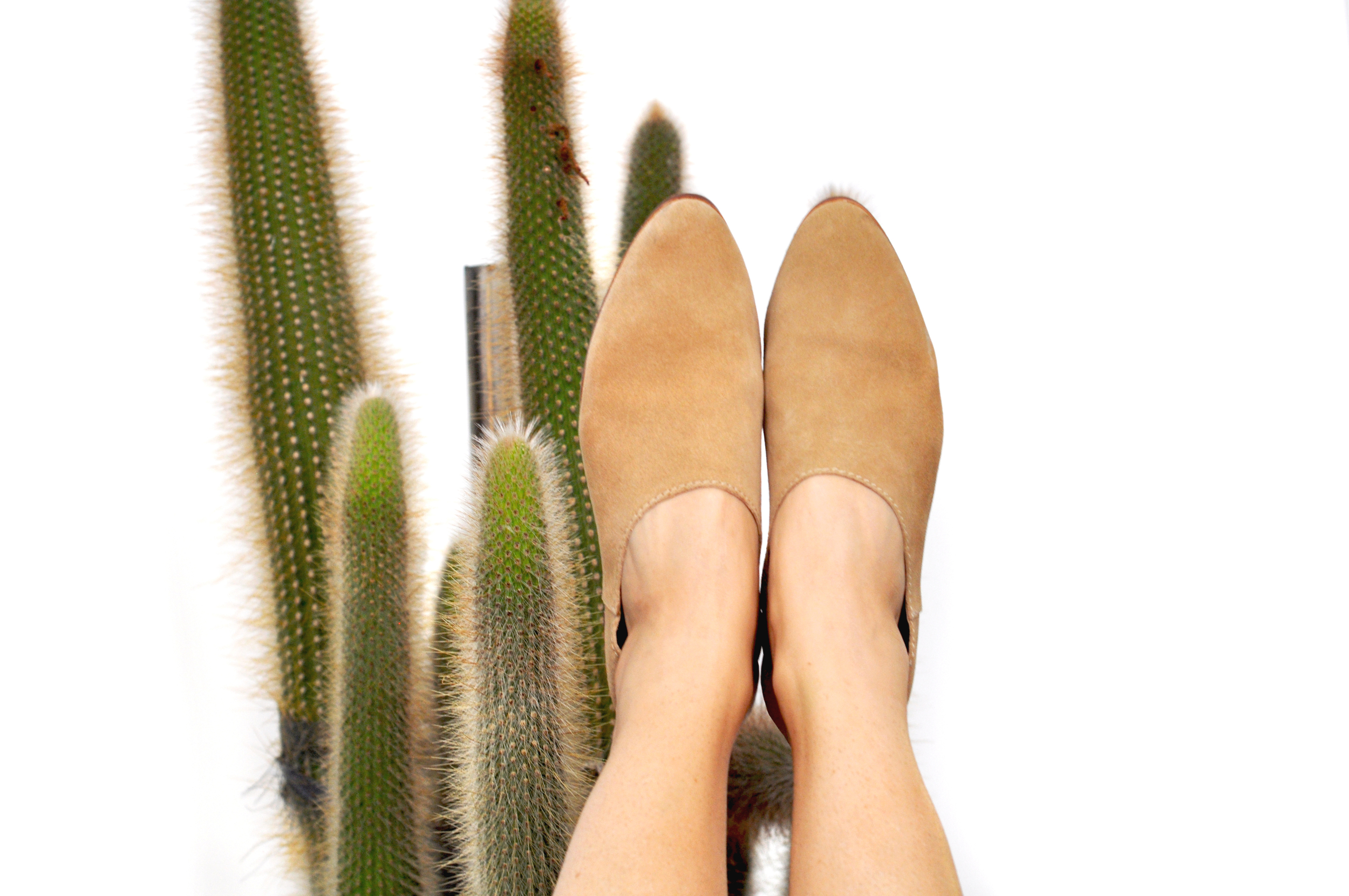 to-be-magnetic-shoes-cactus