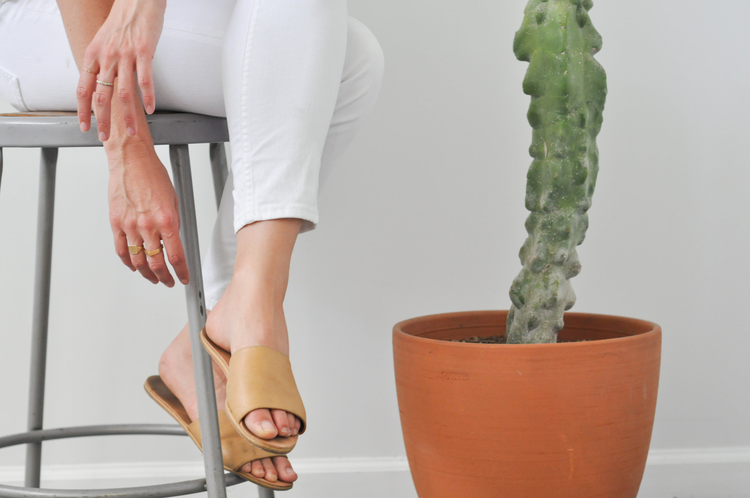 free-and-native-shoe-cactus