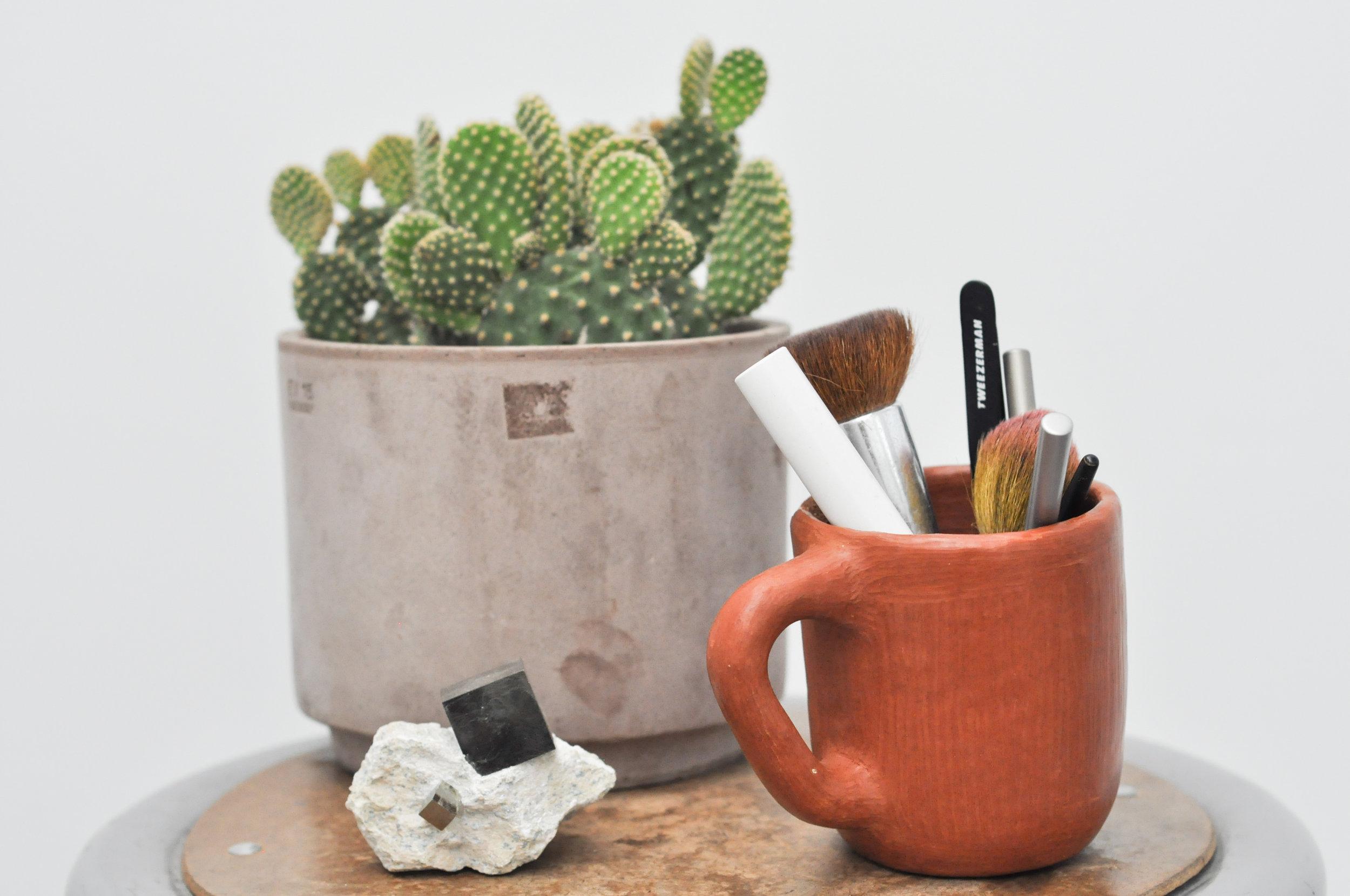 to-be-magnetic-cactus-mug-pot
