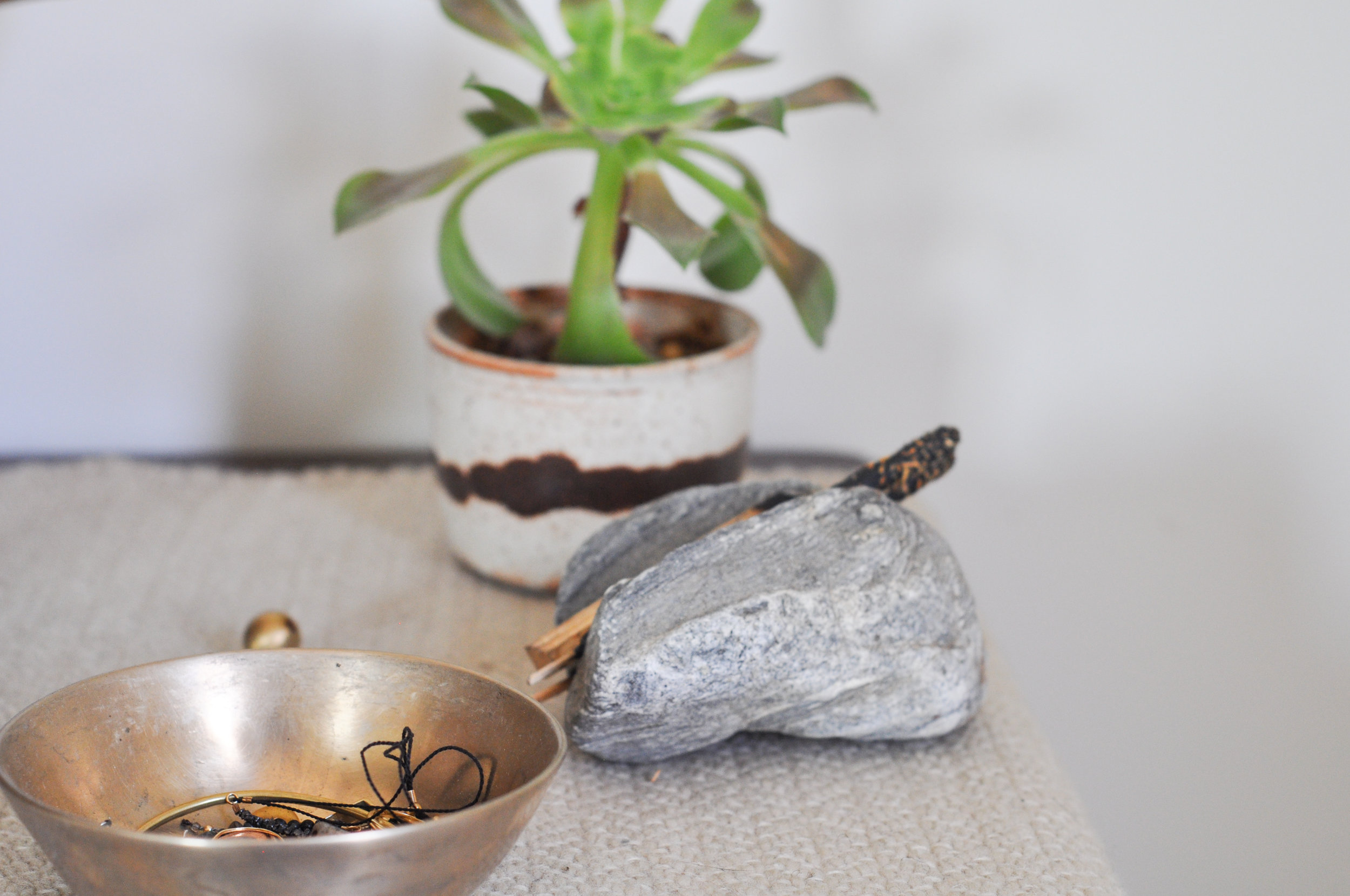 free-and-native-table-plant-bowl