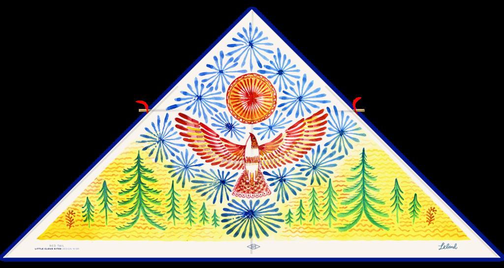 Red Tail Kite