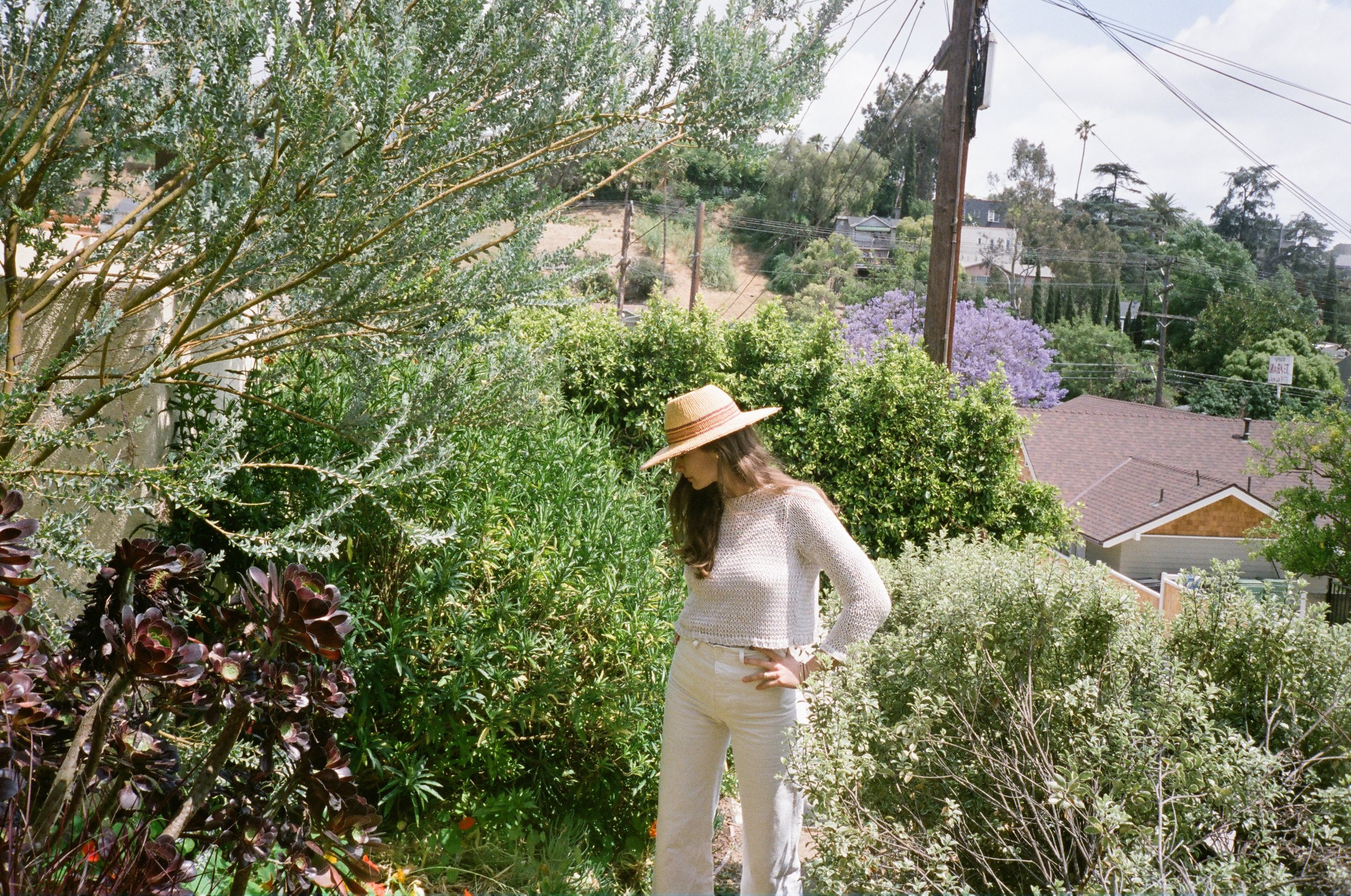 free-and-native-outdoors-garden-Lacy Phillips