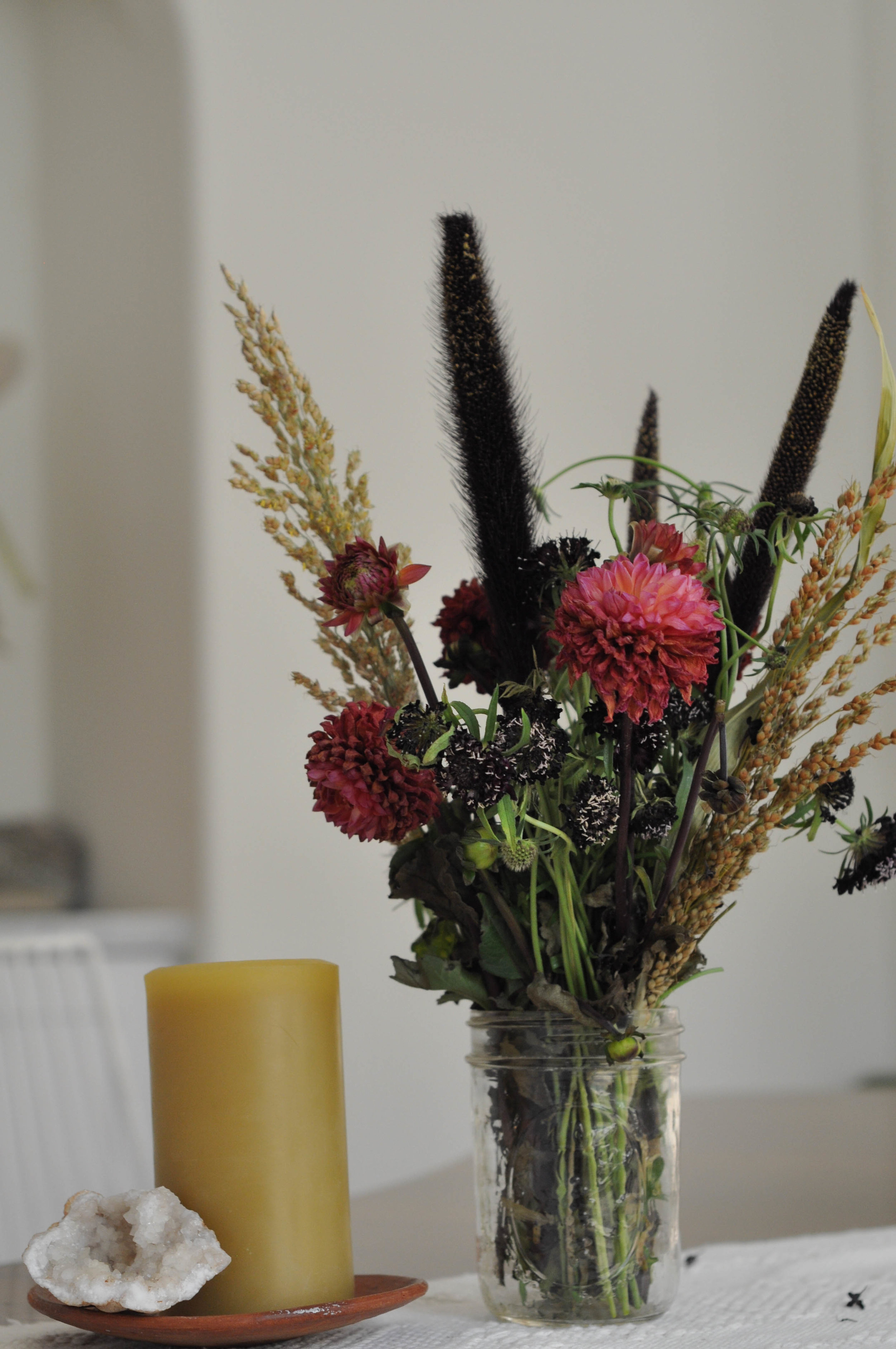 free-and-native-dried flowers (1 of 1).jpg