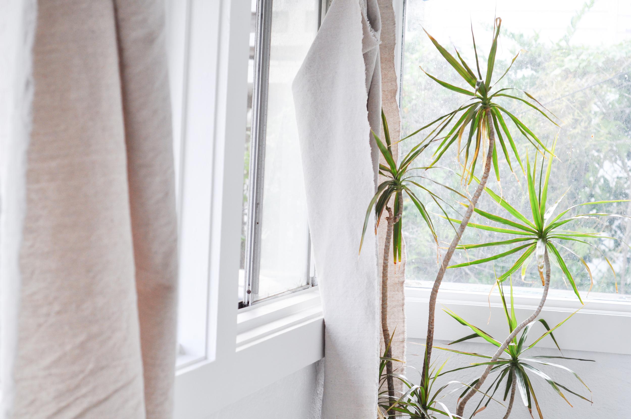 Free-and-native_Airbathing-tree-window-curtain