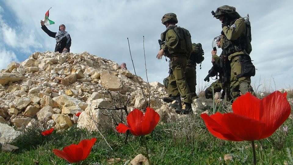 Photo credit: Bilal Tamimi, Tamimi Press (Nabi Saleh)