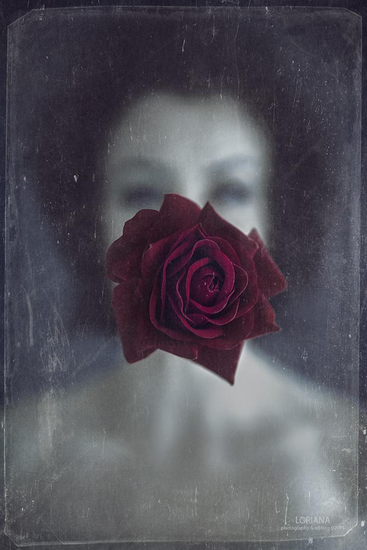 English Rose3 web logo.jpg