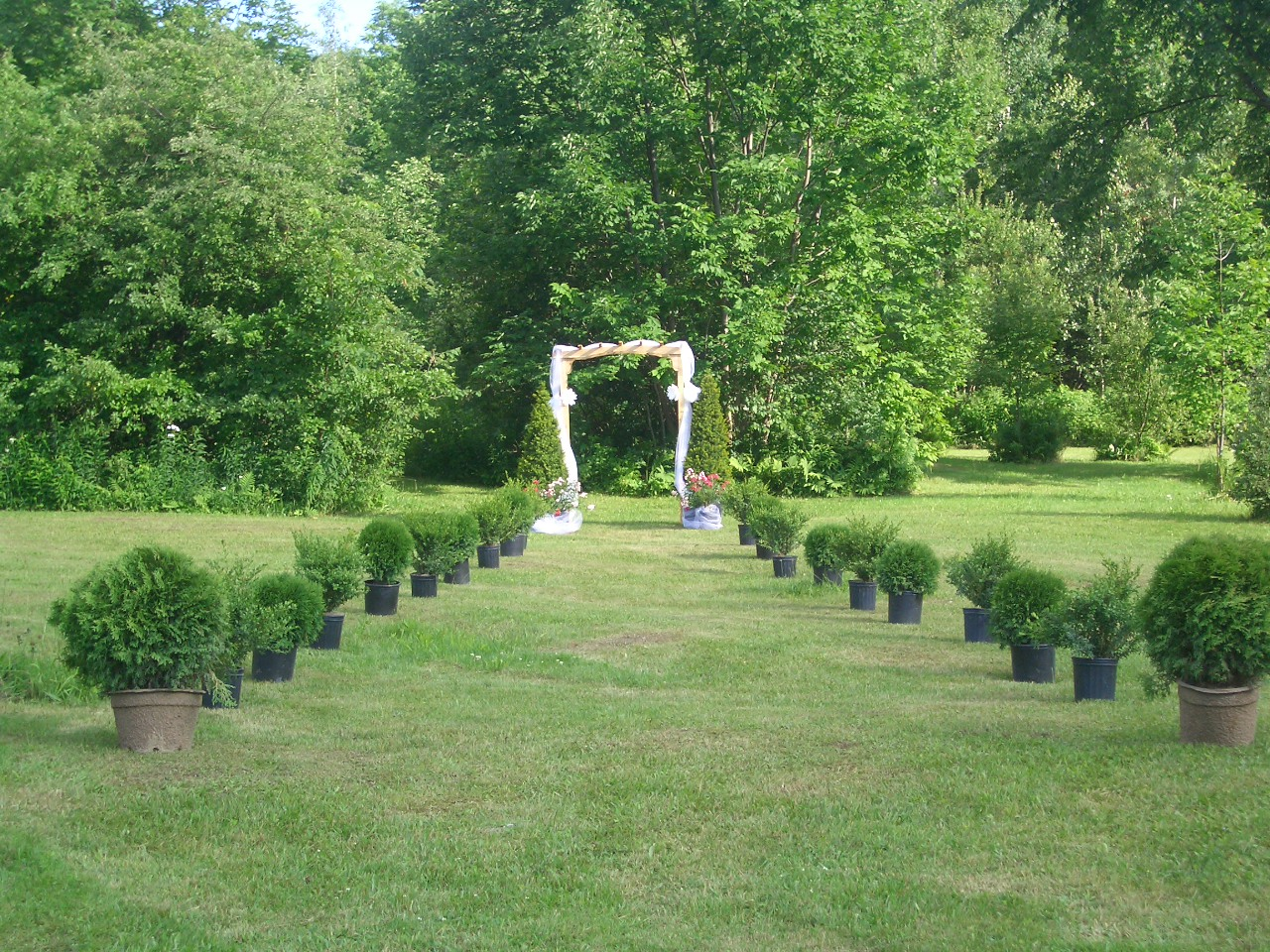 Pergola in the Field.JPG