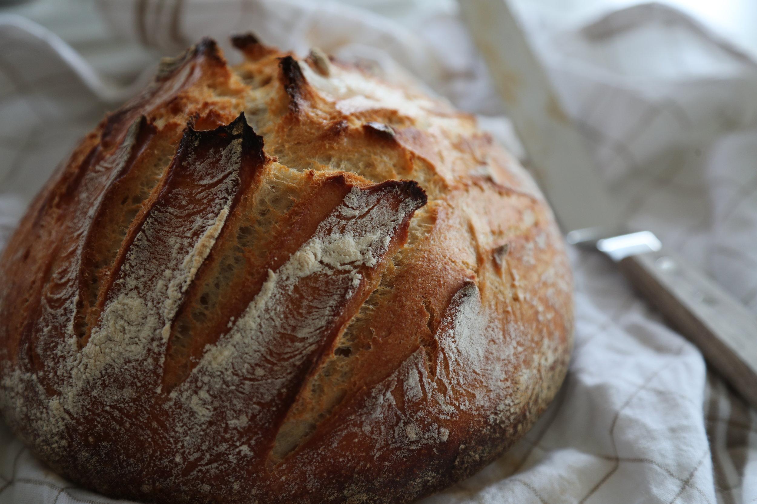 Italian Ciabatta Bread.jpg