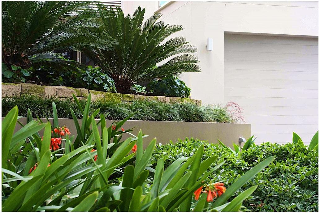 ferguson-lilli-pilli-residential5.jpg