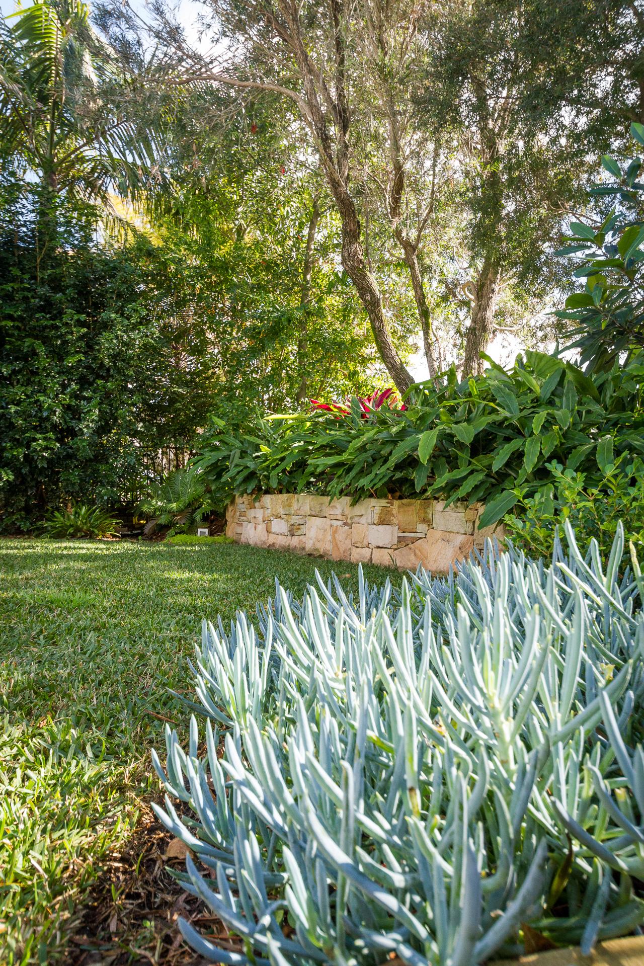 cronulla_residential_garden_design 4.jpg