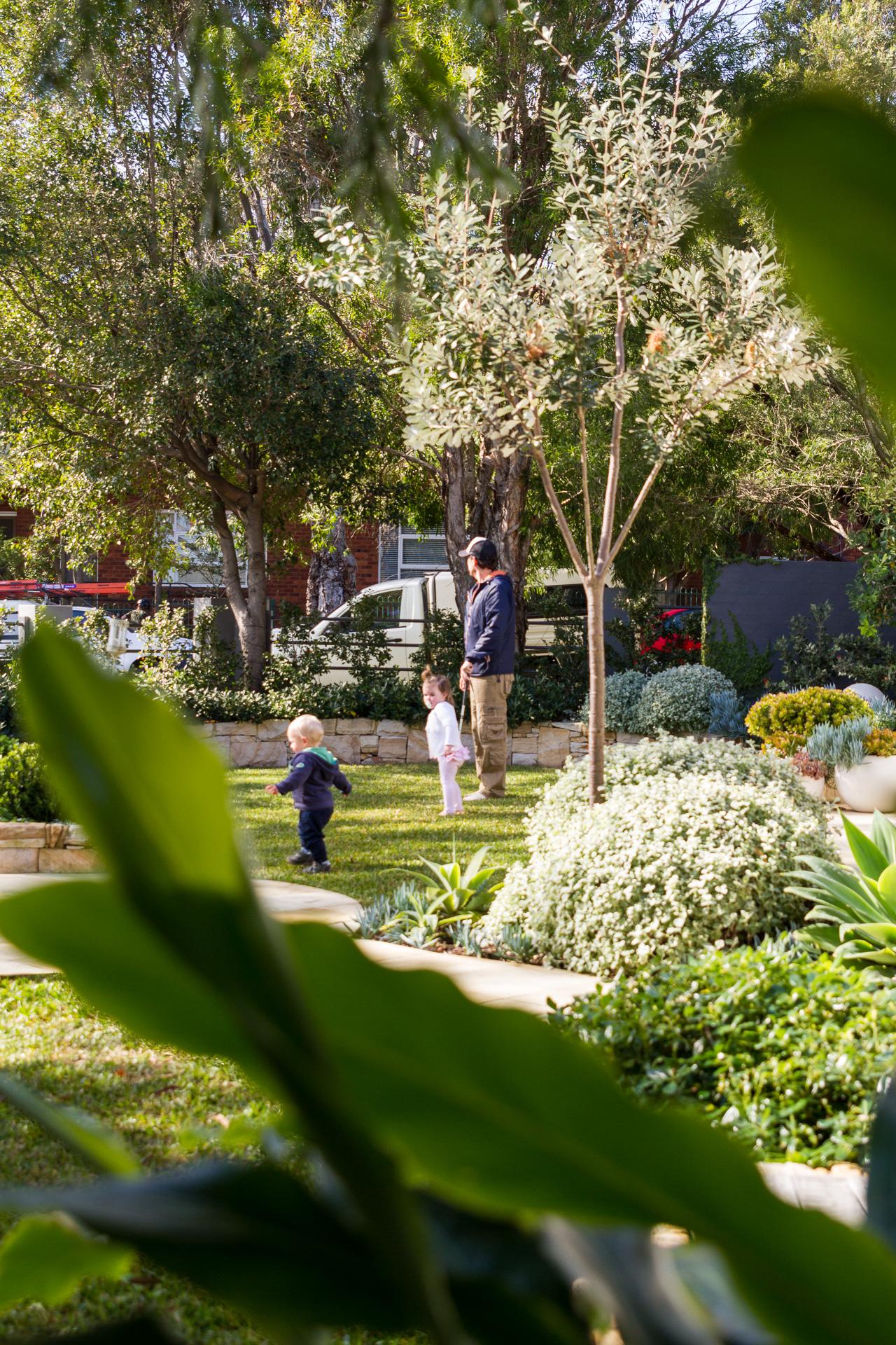 cronulla_residential_garden_design 9.jpg