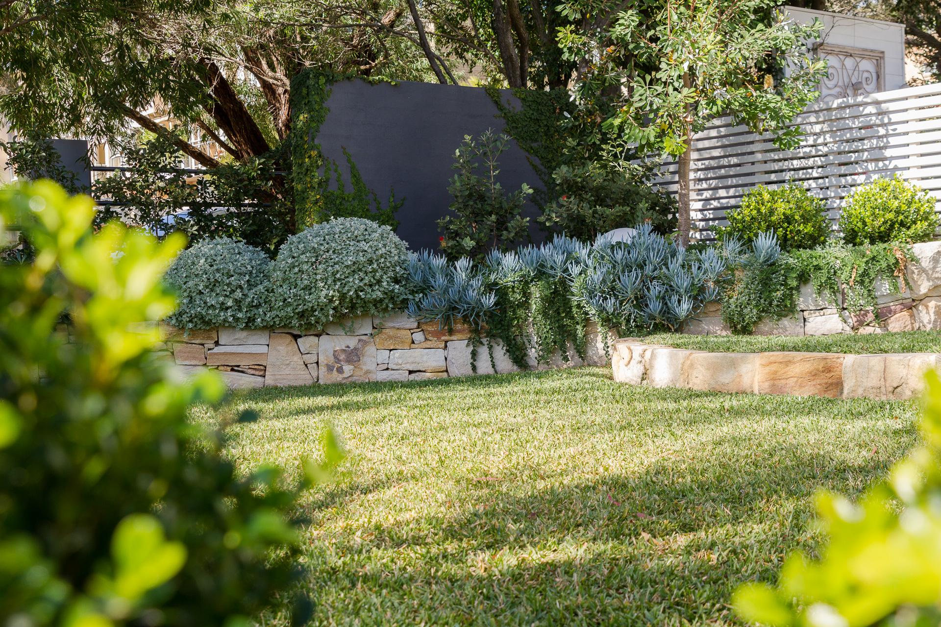 cronulla_residential_garden_design 18.jpg
