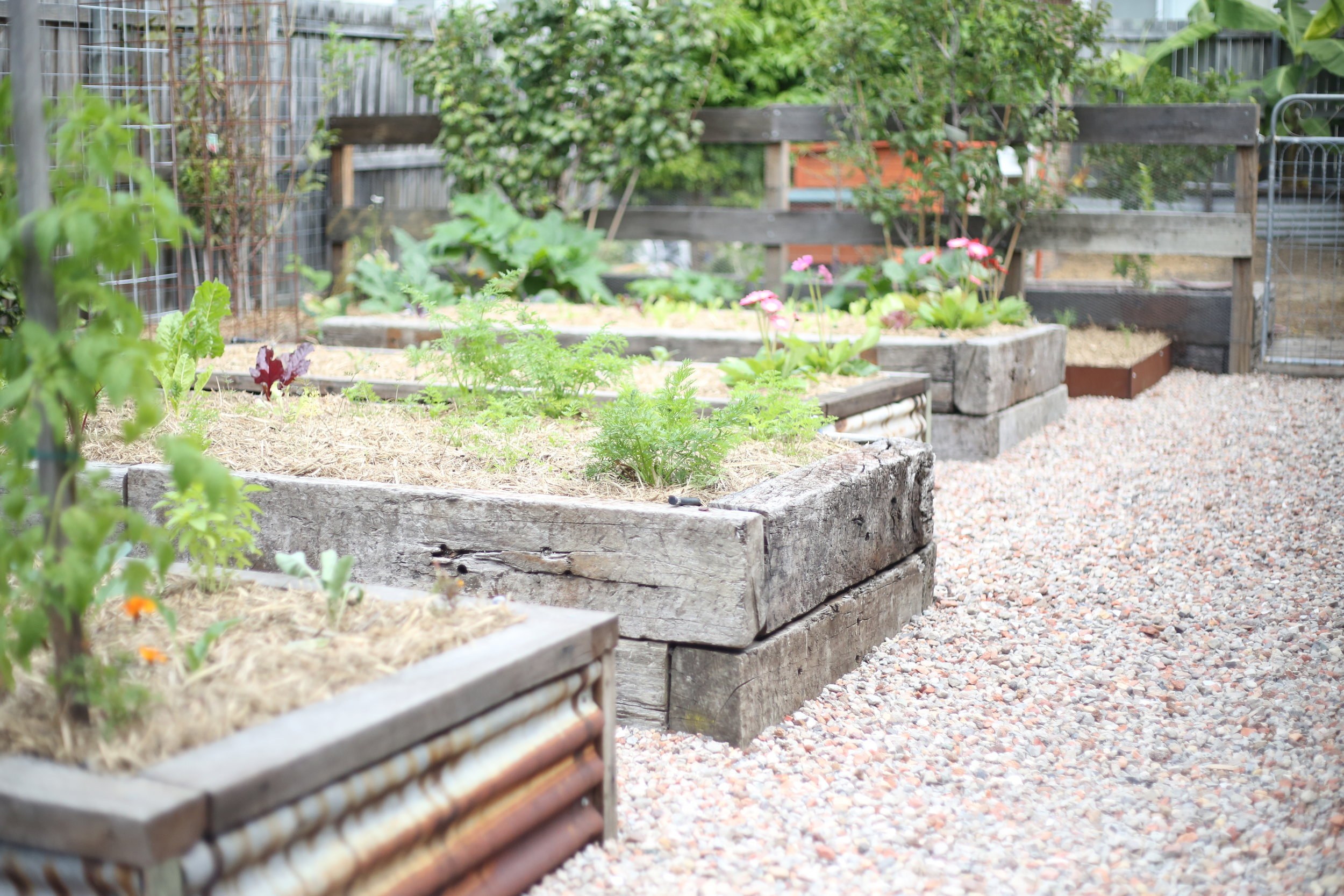 PERMACULTURE DESIGN AND INSTALL