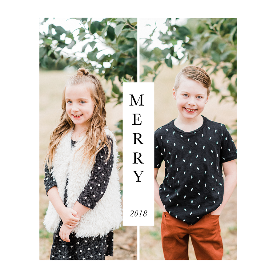 holiday card mango ink and KC England Photography